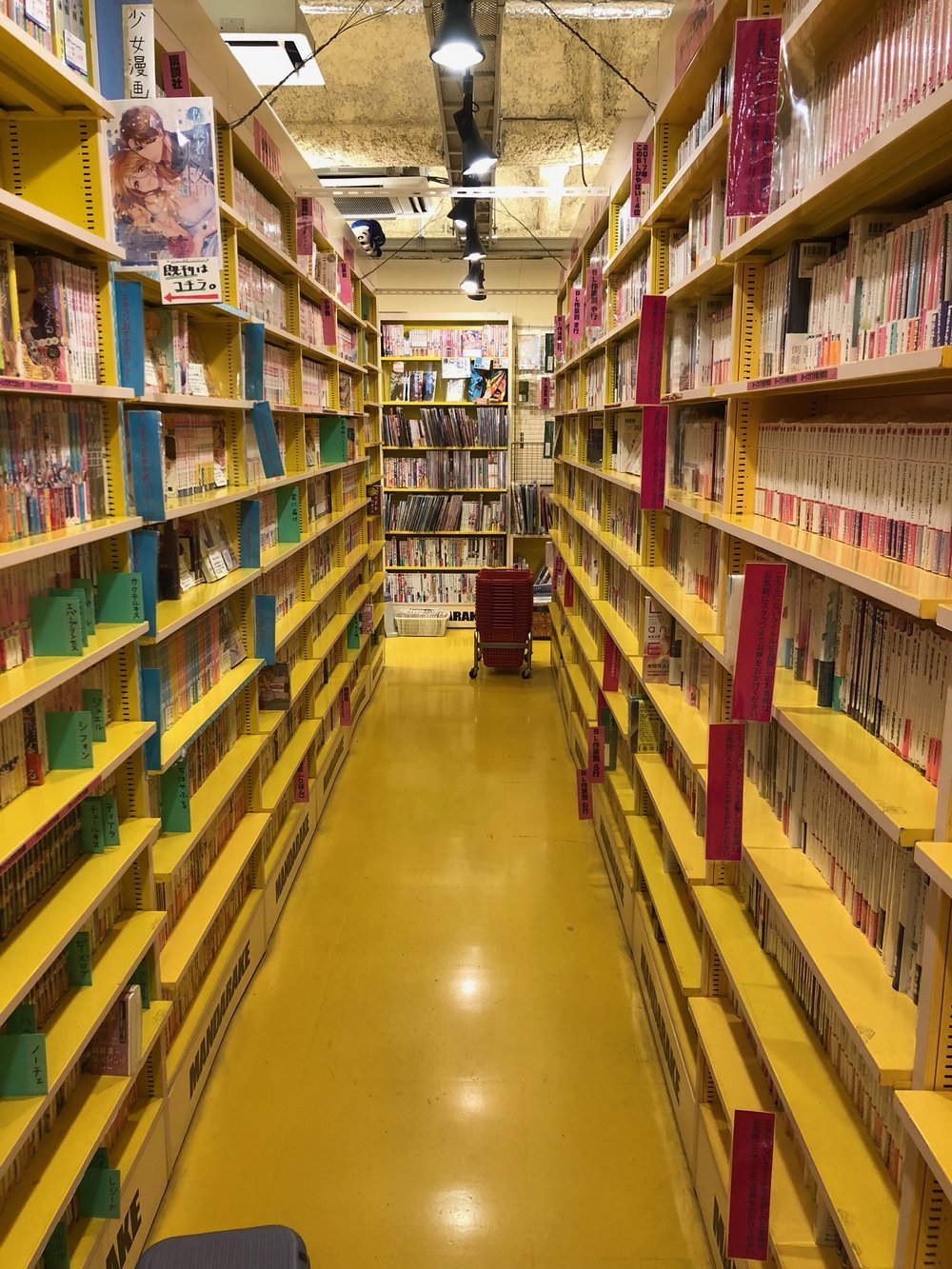 A typical manga (Japanese comics) store with endless shelves of comics. This particular level featured gay/lesbian manga and a focus on J-POP boy bands.