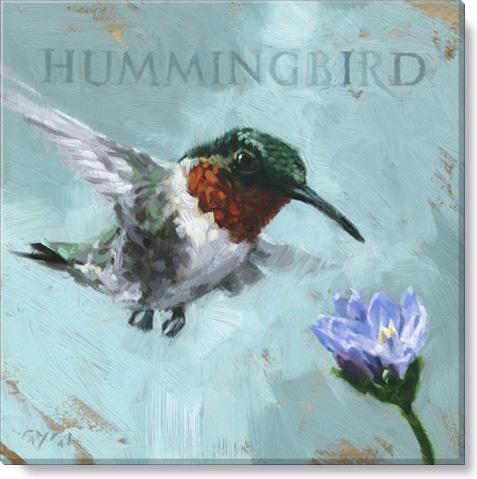 Hummingbird Giclee Art Print - Darren Gygi