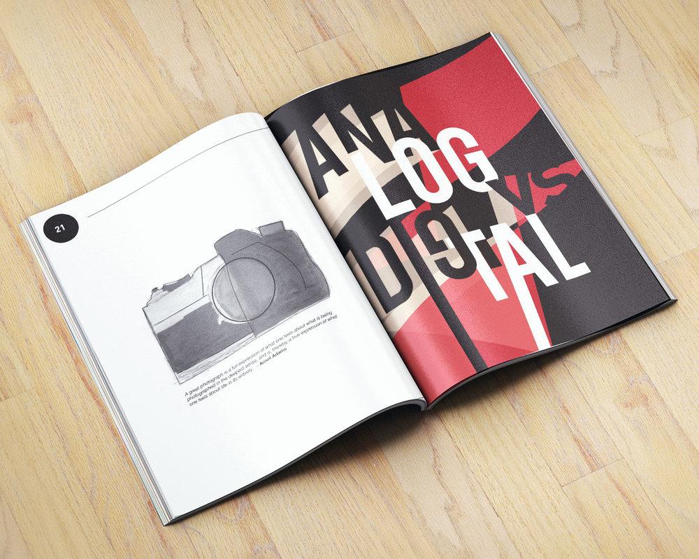 fd 1b.jpg