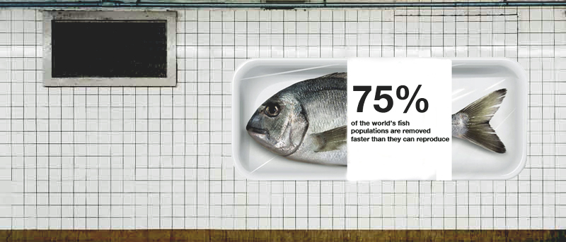 subway fish.jpg