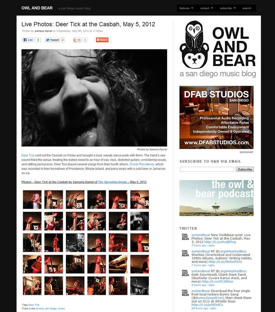 deer tick photos by samaria daniel the sprouting image for owl and bear