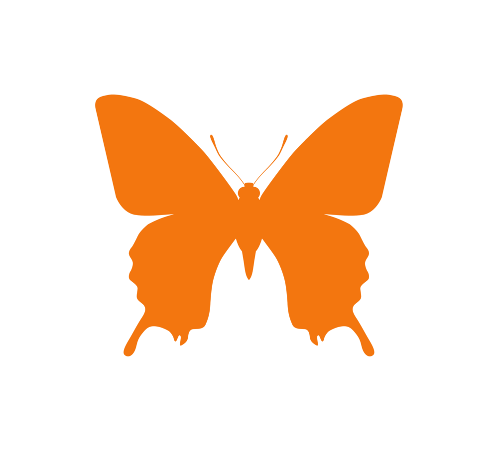 Protein Butterfly Fitness