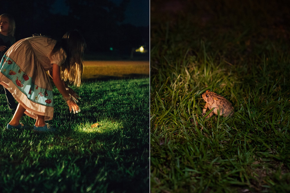 IMG_8097_diptych frog hunt_1080.jpg