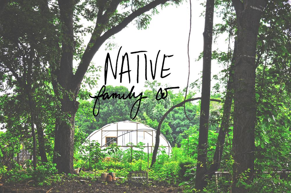 Native Greenhouse4.jpg