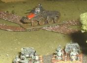 French 47mm about to surprise a SdKfz 231