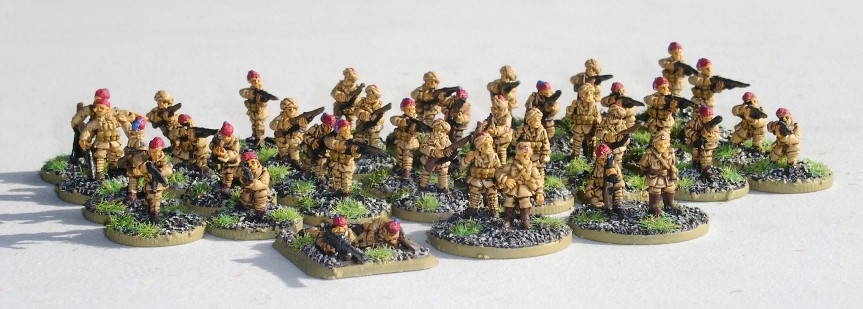 Platoon: Libyan Infantry
