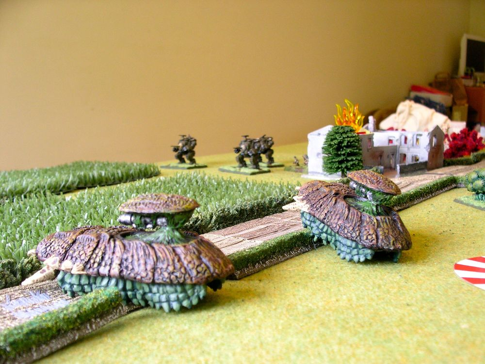 a close up of the carapace tanks