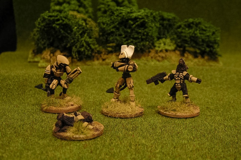 Platoon command: Soriog magnate-officer, officer's veteran Soriog assistant, prostrate Raug Ceepay runner, and Raug Windhowler.