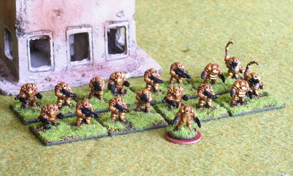 3rd (Veteran Infantry) Platoon