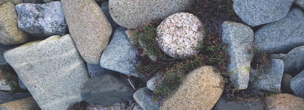 rocks-banner.jpg
