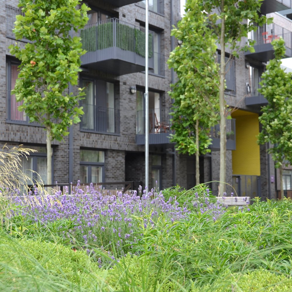 Burridge Gardens -