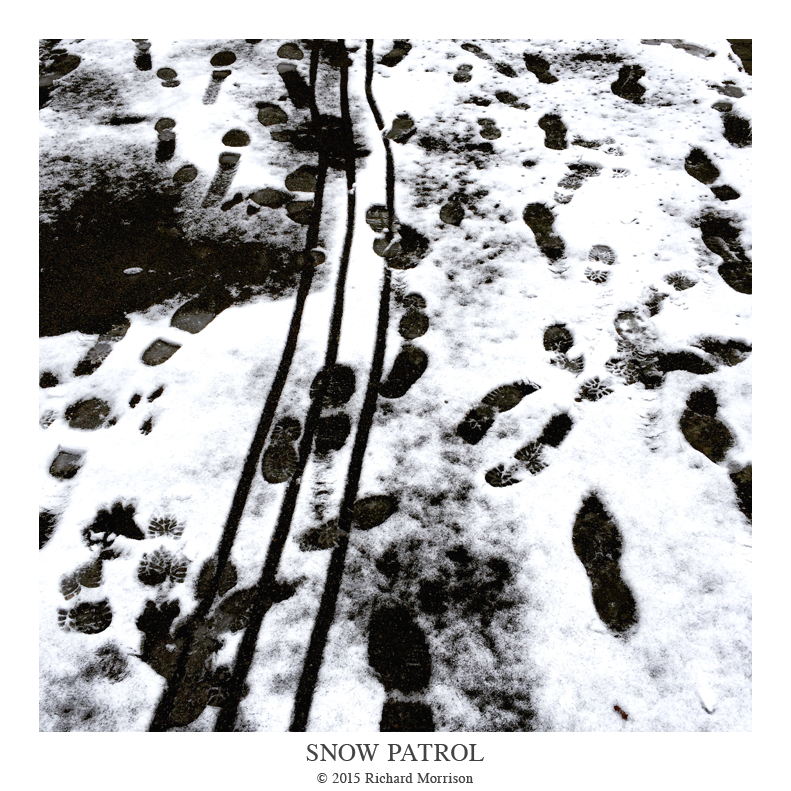 Snow_Patrol.png