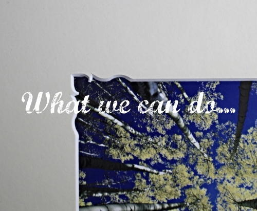 What we can do...