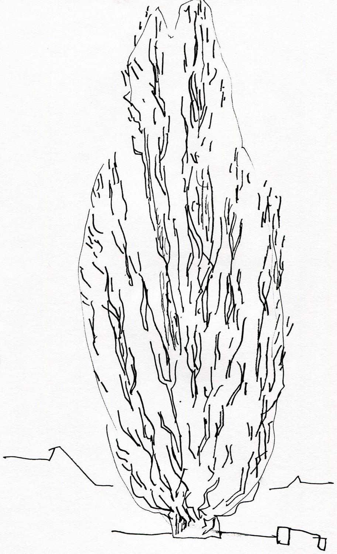 treportrett - nett (7).jpg