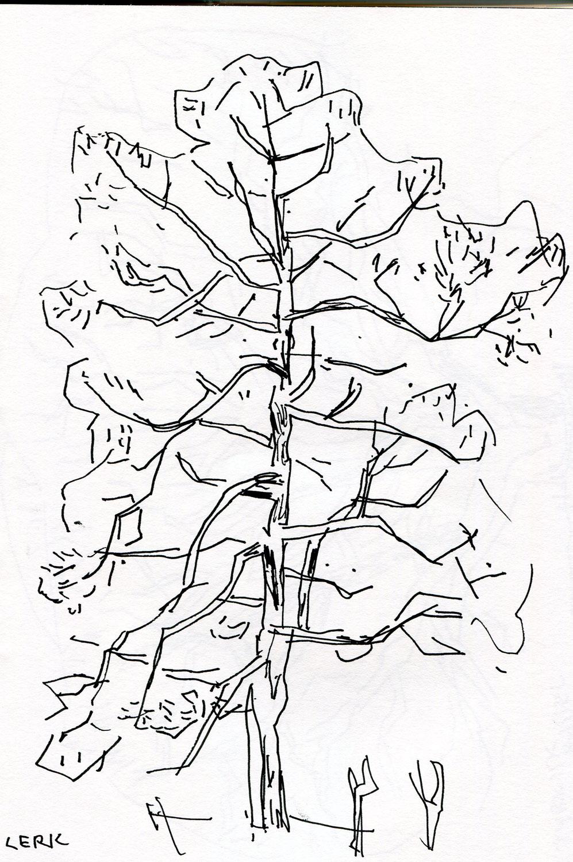 treportrett - nett (6).jpg