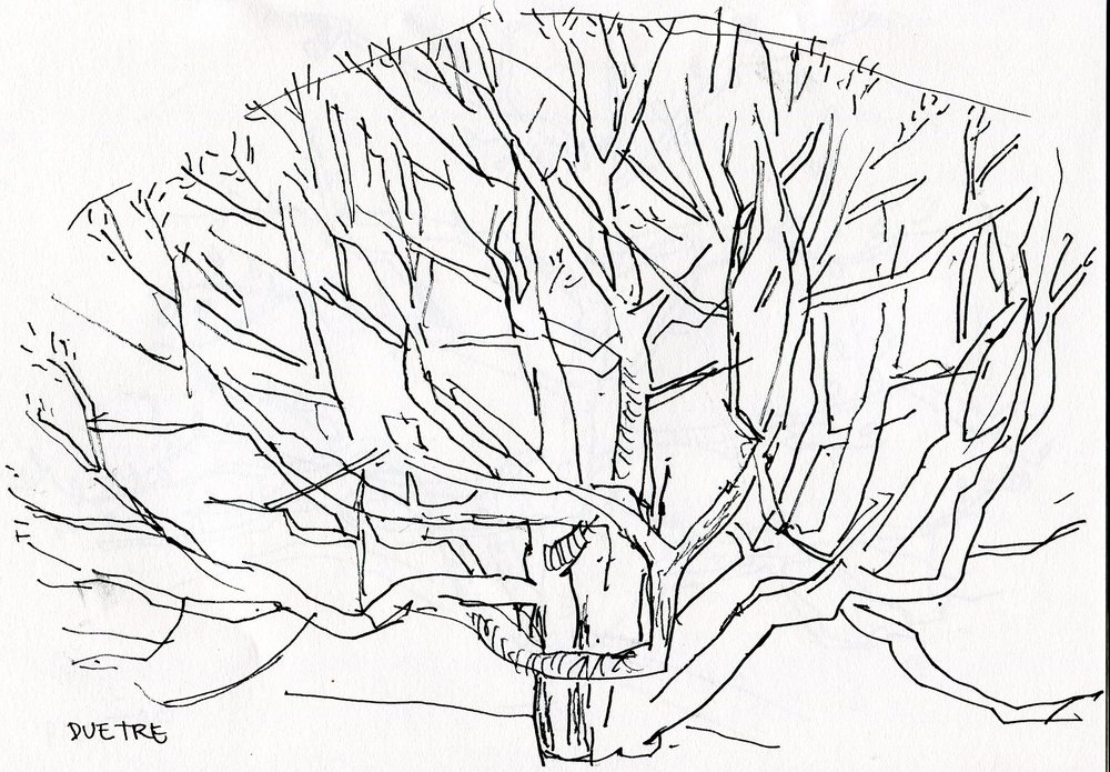 treportrett - nett (17).jpg