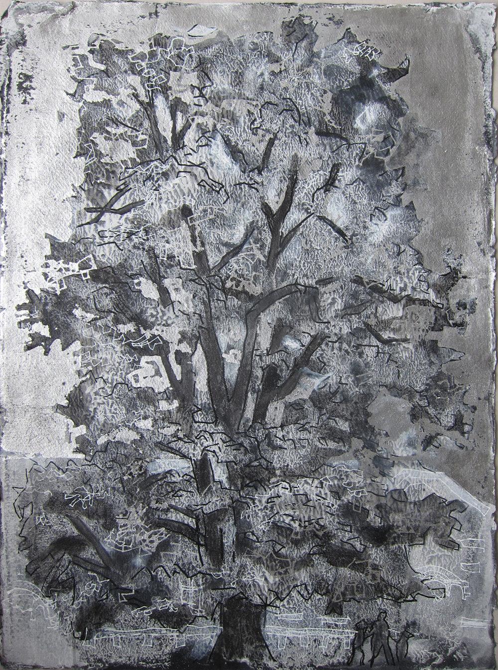 Treportrett. Lind fra NMBU-parken. 70 x 50 cm. Tusj og bladmetall