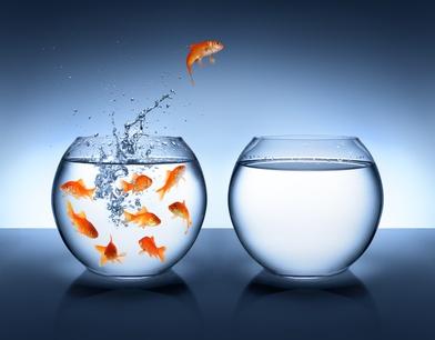 #61026517 - goldfish jumping - improvement and career concept© Romolo Tavani