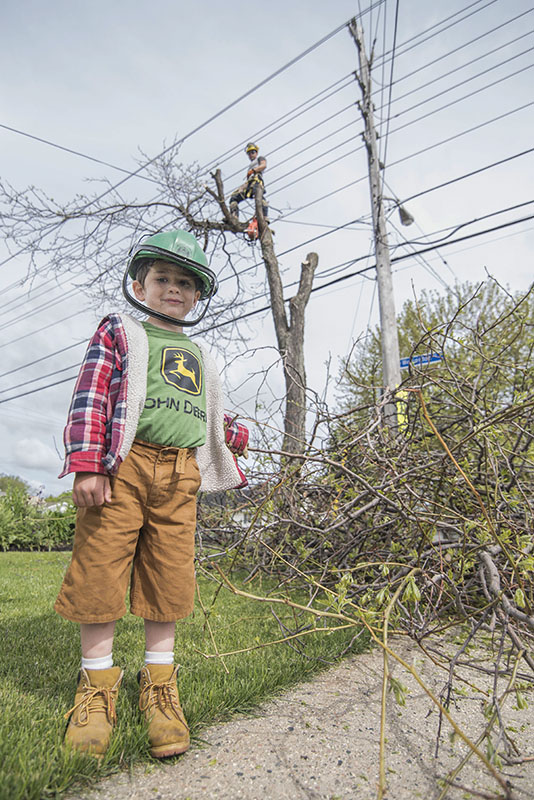 Just Like Dad: Sam Joseph, 4, was lending Dad a helping hand Saturday Morning on Lake St, as he took down a tree, Mom was close by ensuring safety.