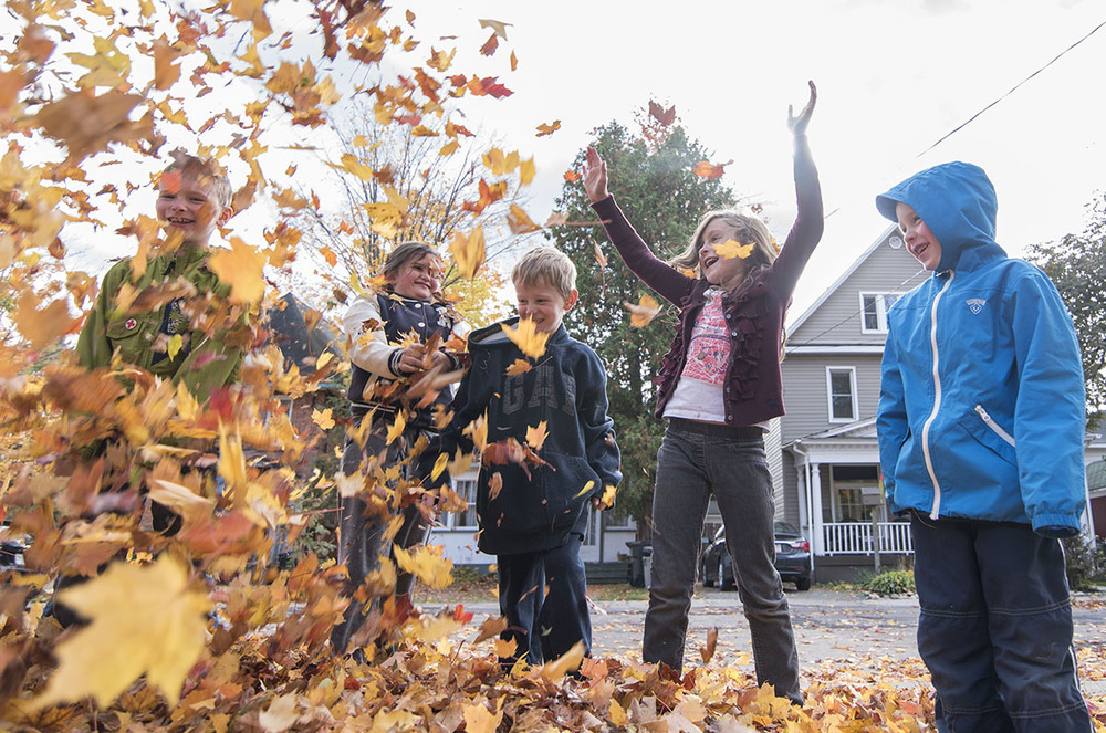 Fall Fun:  Jack Currie, 8, Meaghan Rosso, 9, Evan Boville, 6, Lexyss Gibbs, 6 and Henry Currie, 3 were making the most of leaf clean-up on Saturday October 17, 2015 on Herrick St.