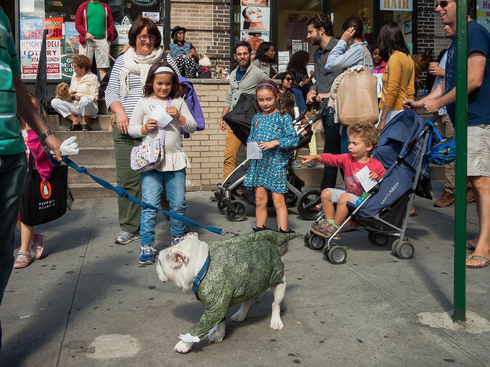 Brooklyn Heights, NYC, 2913