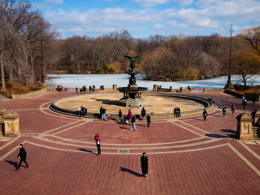 Bethesda Fountain, February 2011