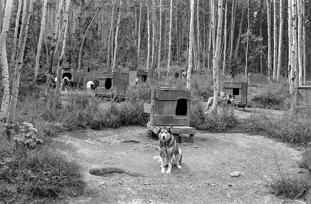 Aspen, CO, 1971