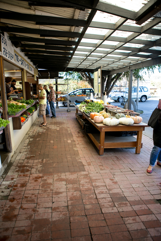 chino+farms+manresa+book+signi-2900307102-O.jpg