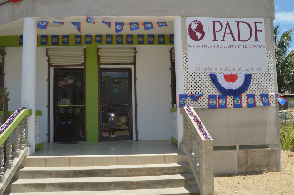 PADF staff decorated the office inside and out for Belize Independence Day.