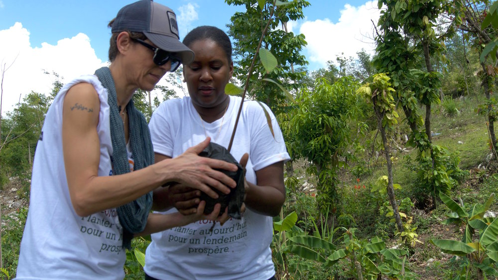 Celebrity Chefs Launch Campaign with PADF  Dominique Crenn's Root Project in Haiti    Read More
