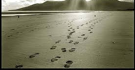 -    The journey to joy is paved with the footprints of the midnight walkers.