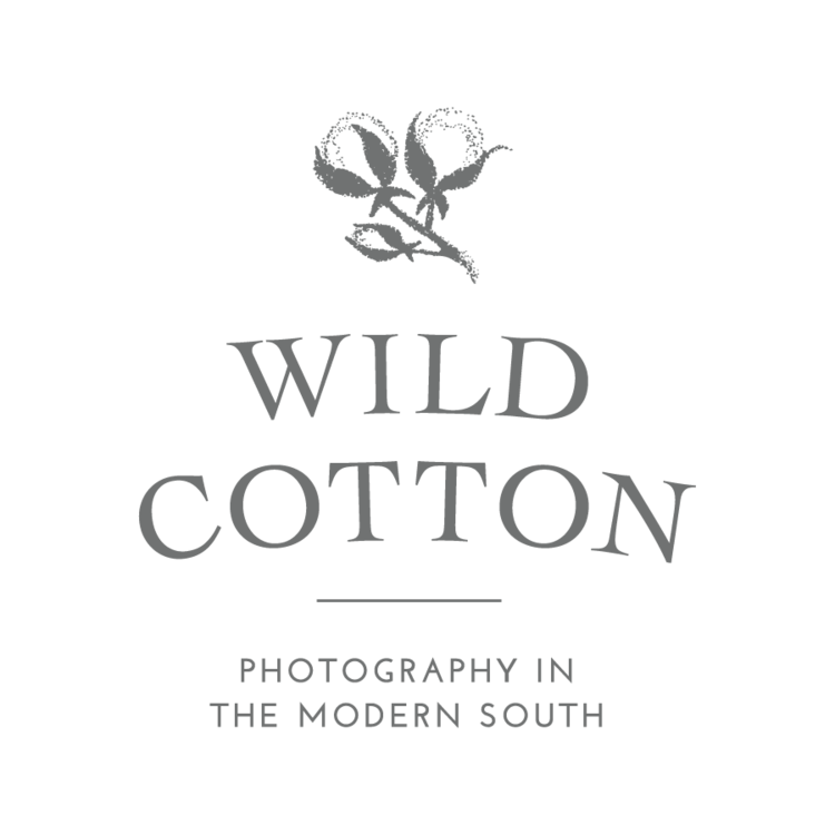 Wild Cotton Photography: Photography in the Modern South