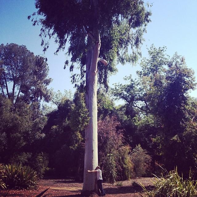 My boyfriend, the tree-hugger. 🌳