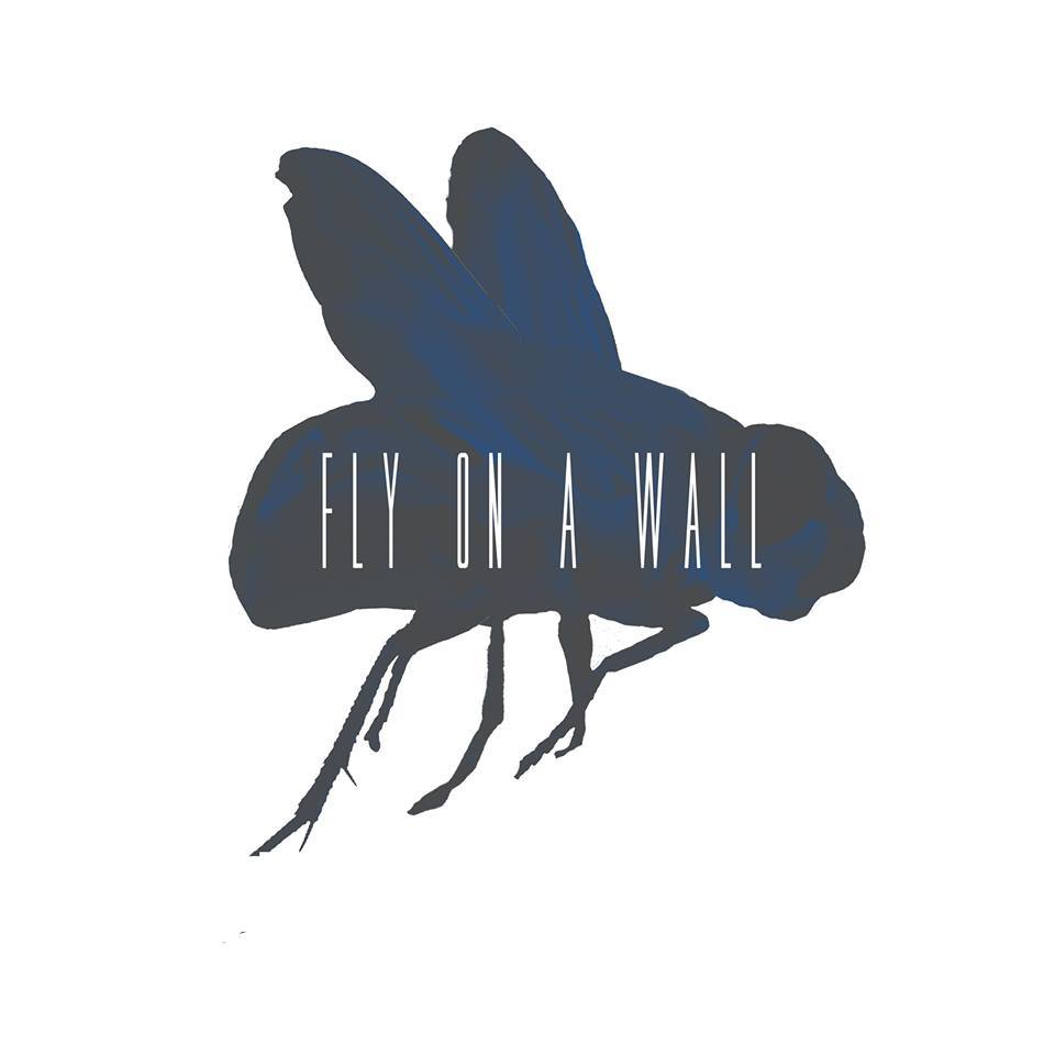 About Fly on a Wall