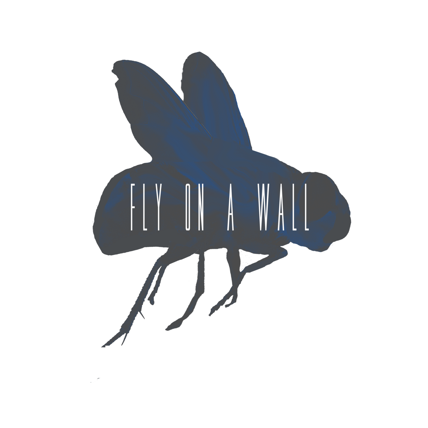Fly on a Wall
