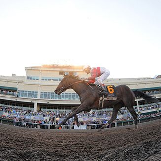 Image courtesy of gulfstreampark.com