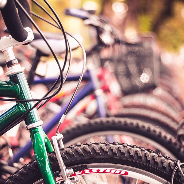 giant bike.jpg