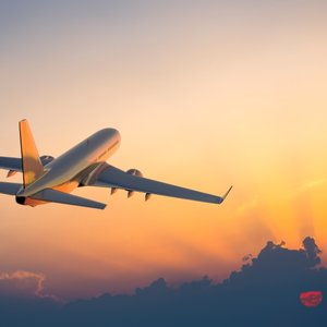 airplane-iStock_000021435411Small.jpg