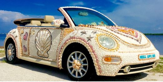 shell love bug.JPG