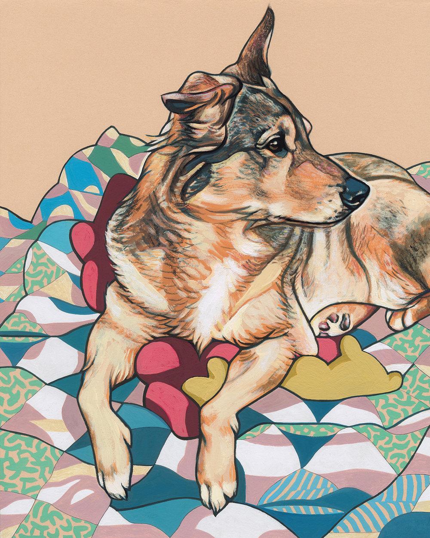 DOG STELLA 8x10 WEBSITE.jpg