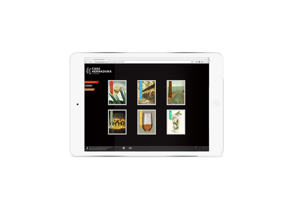 iPad Mini_Herradura2.jpg