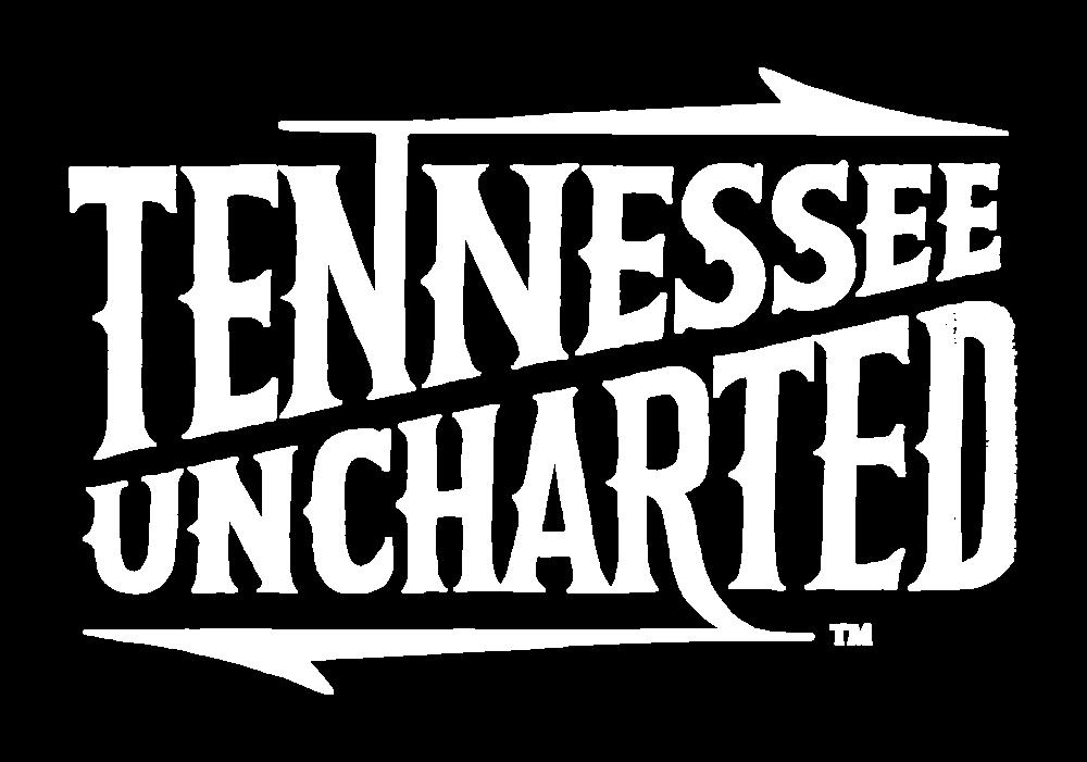 TNU_logo.png