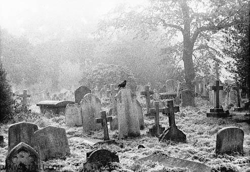 London. Brompton Cemetery 1. #0567