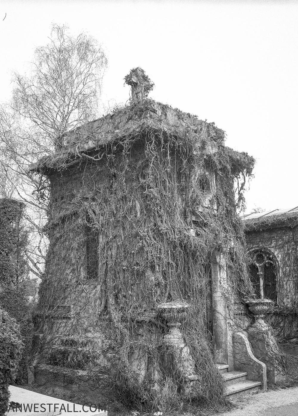 Croatia. Overgrown crypt. #0573
