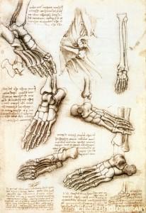 feetbones