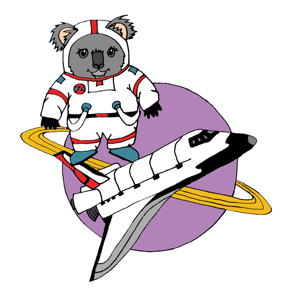koala-no-name.jpg