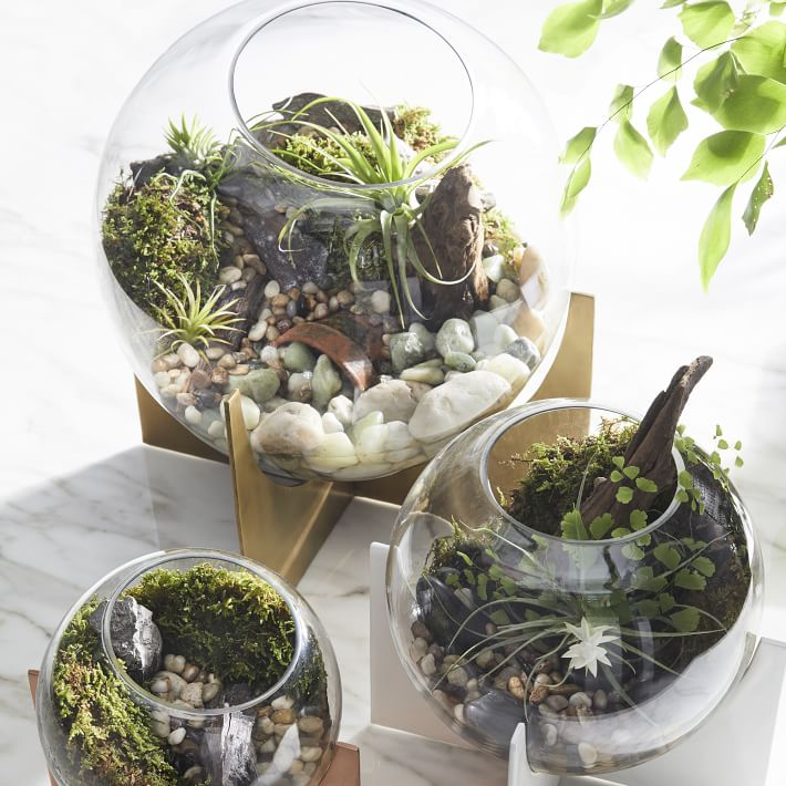 cross-base-terrariums-copper-1-o.jpg