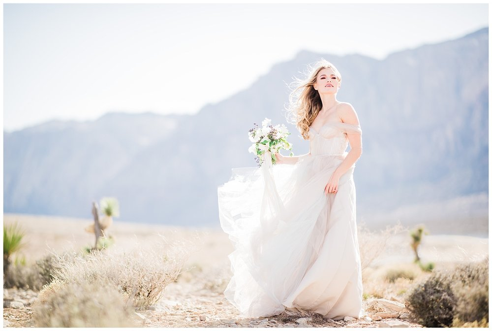 san-diego-fine-art-wedding-photography-desert-bride.jpg