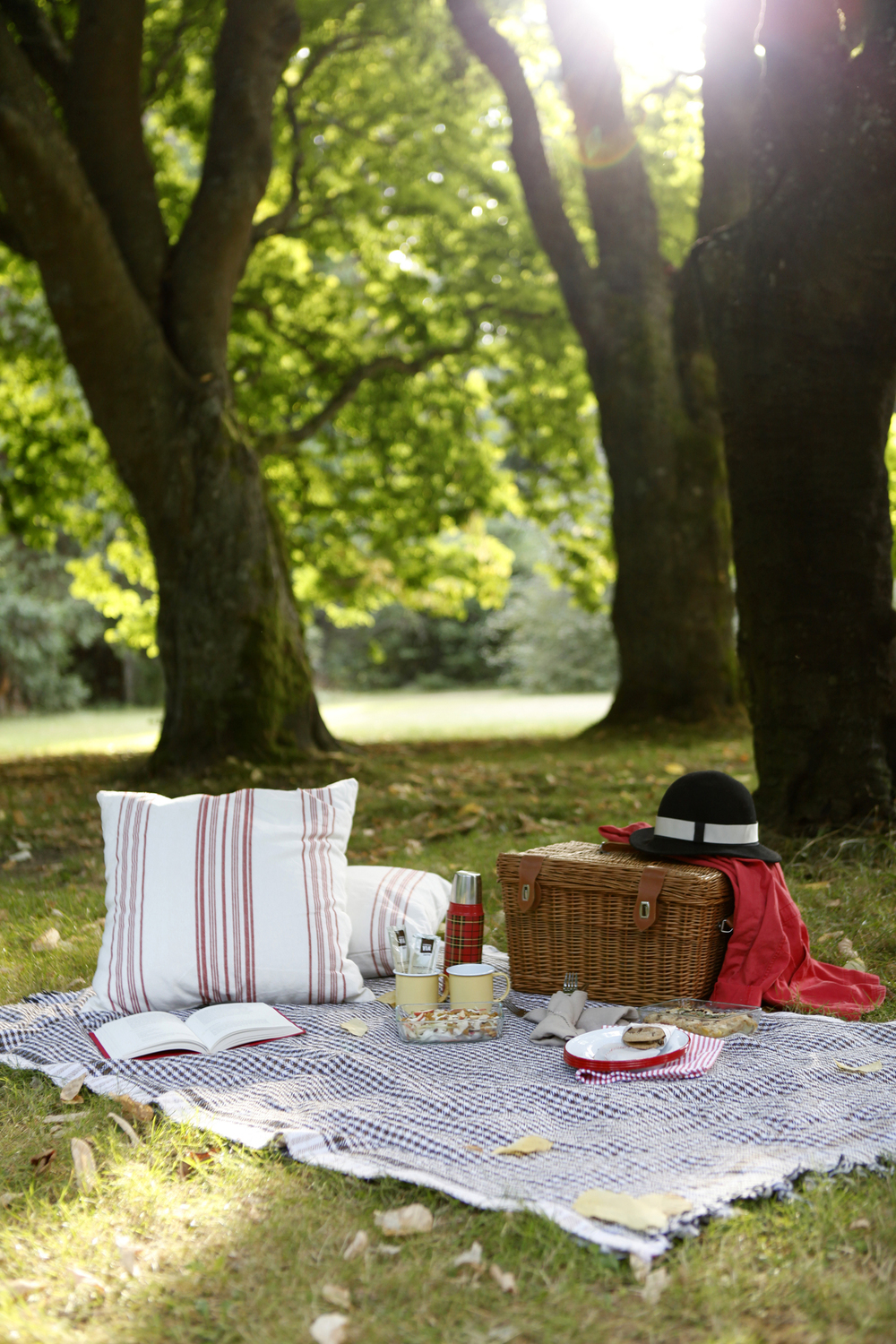 picnic in the park - image1.JPG