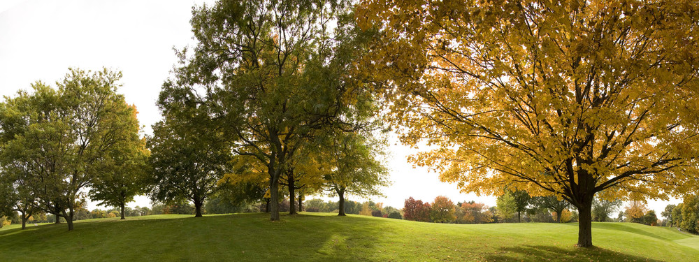 19- Golf panorama 2.jpg